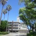 Photos: 【14701号】キャンパス 令和010521 /3