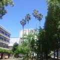 Photos: 【14703号】キャンパス 令和010521 /2
