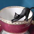 写真: 縁ネコとコーヒーカップ