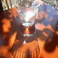 写真: コップの光2