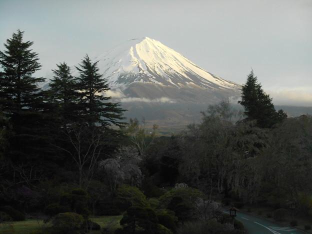 富士山も見えました