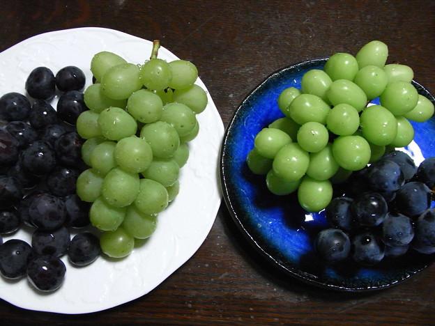 ブドウ4種