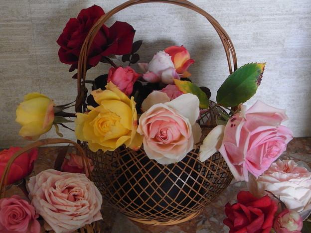 ミニバラ 新年切り花