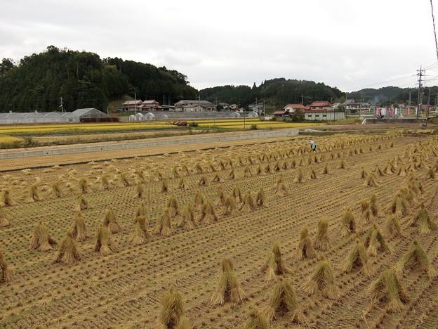 福岡〜東京 ツーリング 20150921 (4)