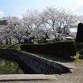 写真: 龍岡城跡DSC_3473