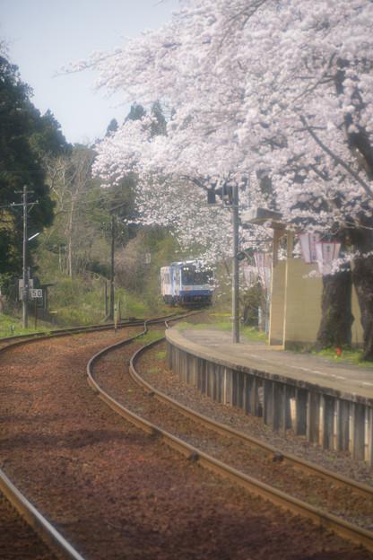 Photos: 能登さくら駅