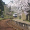 写真: 能登さくら駅