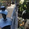 Photos: 三渓園の橋1