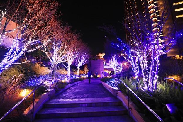 大阪光之饗宴-難波park-4