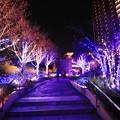 写真: 大阪光之饗宴-難波park-4