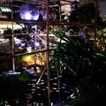 写真: 大阪光之饗宴-難波park-6