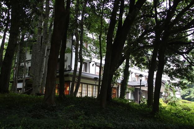 木立の中のホテル