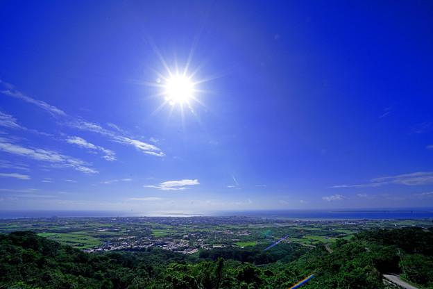 Photos: 南の島の冬の太陽