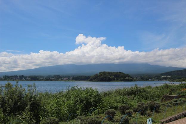 (04)富士山