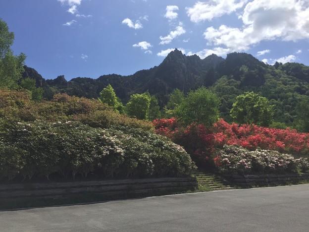 日本の山 奥秩父・瑞牆山 (5)