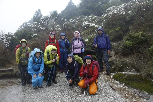 日本の山 ゆっくり登山 縄文杉から宮之浦岳 満開の石楠花も満喫 #山へ行こうよ。