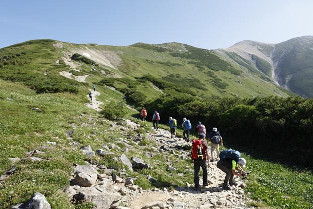 日本の山 山の天気講座 薬師岳 薬師平から肩への道すがら
