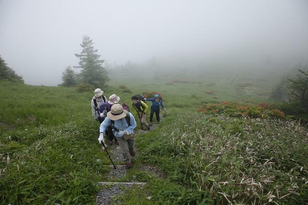 日本の山 美ヶ原ロングトレイル 武石峰への登り