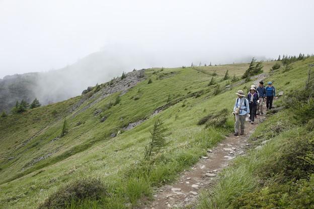日本の山 美ヶ原ロングトレイル 北アルプス展望コースですが、残念です #山へ行こうよ。