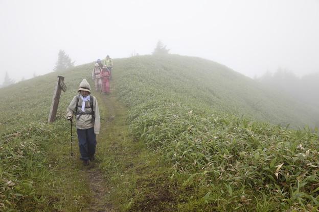日本の山 美ヶ原ロングトレイル 三峰山の下り