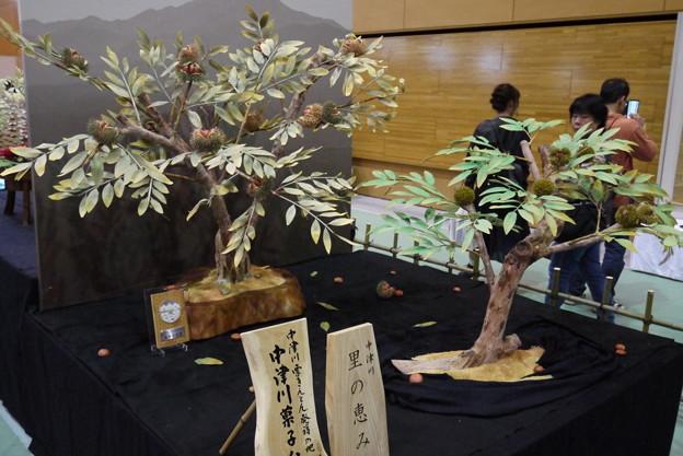 中津川菓子まつり05