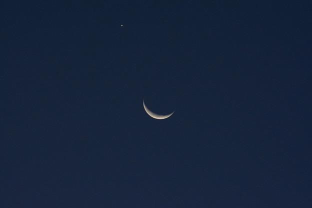 写真: 月と明けの明星?