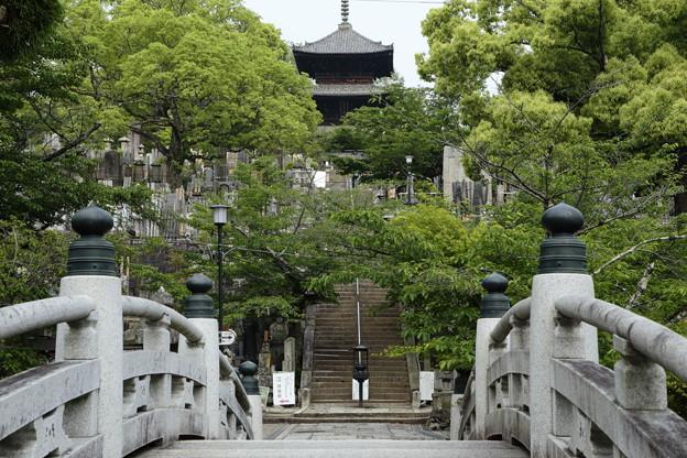 京都5月26