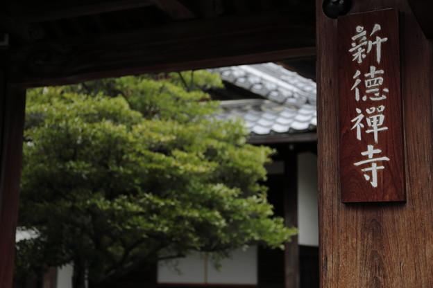 京都5月21