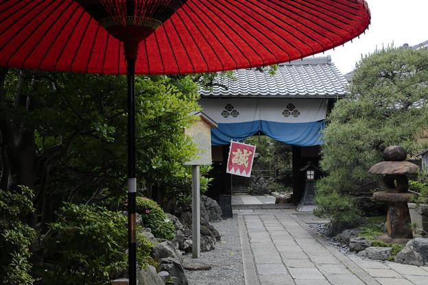 京都5月19