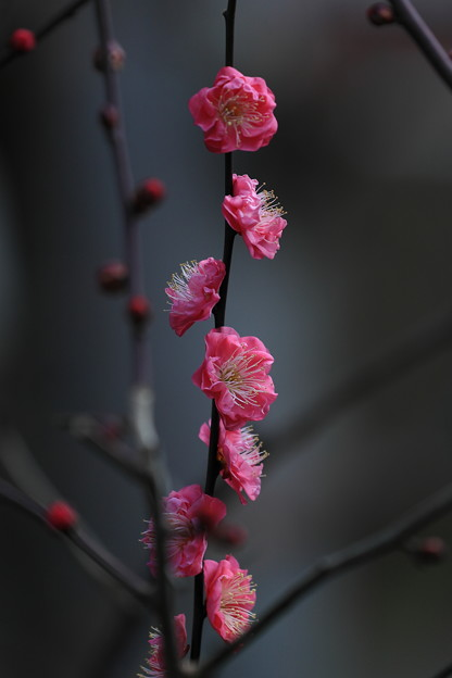 千里川08
