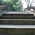 写真: 小石川後楽園_124