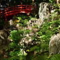 写真: 小石川後楽園_129