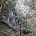 写真: 石灰石採掘跡