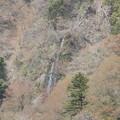 七滝ズーム