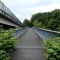写真: 御殿山歩道橋