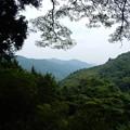 Photos: 小仏峠東