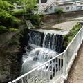写真: 浅川