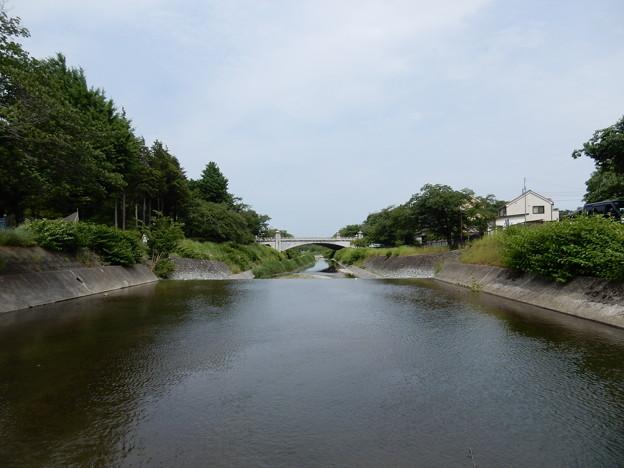 写真: 南浅川橋