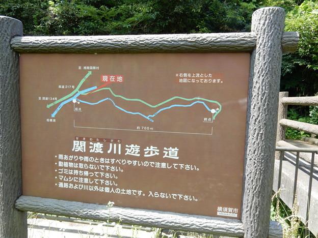関渡川遊歩道