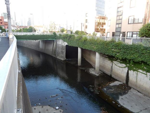 桃園川と合流