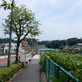 Photos: 北野街道