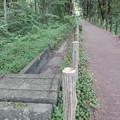 写真: 大野支線