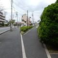 Photos: 歩道