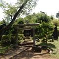 写真: 荒幡富士