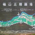 Photos: 横山丘陵緑地