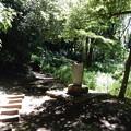 写真: 照手姫遺跡の碑
