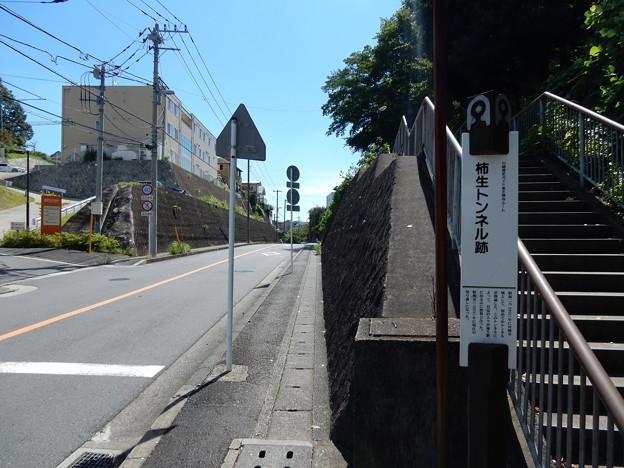 柿生トンネル跡