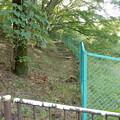 写真: 階段跡