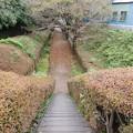 写真: 狭い階段