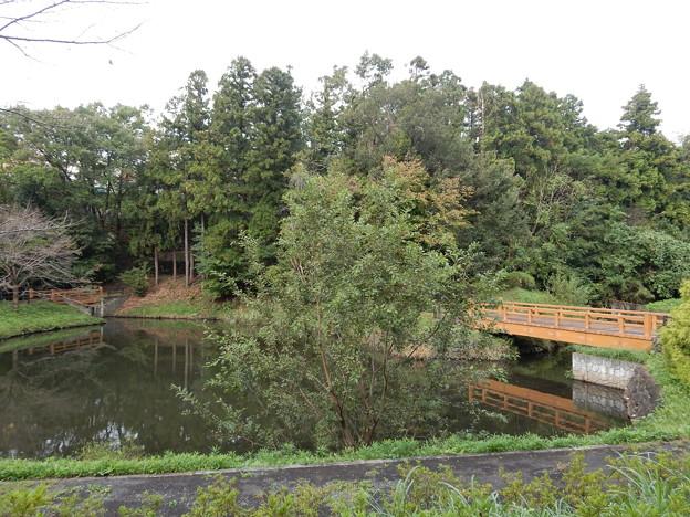 逆川沼公園